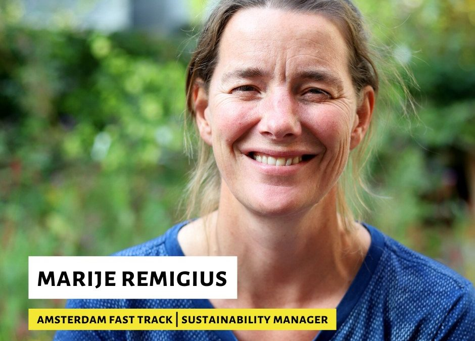 Sustainability Manager in Fast Track